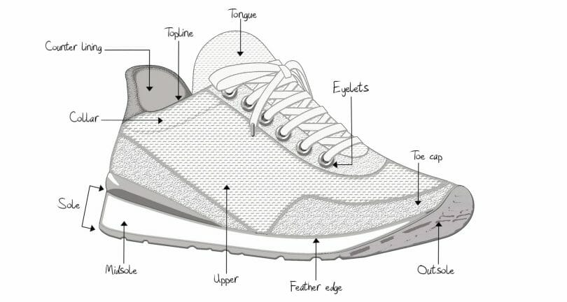 Profile shoe anatomy view with upper and sole