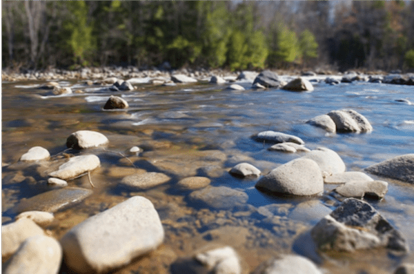 Stream with rocks