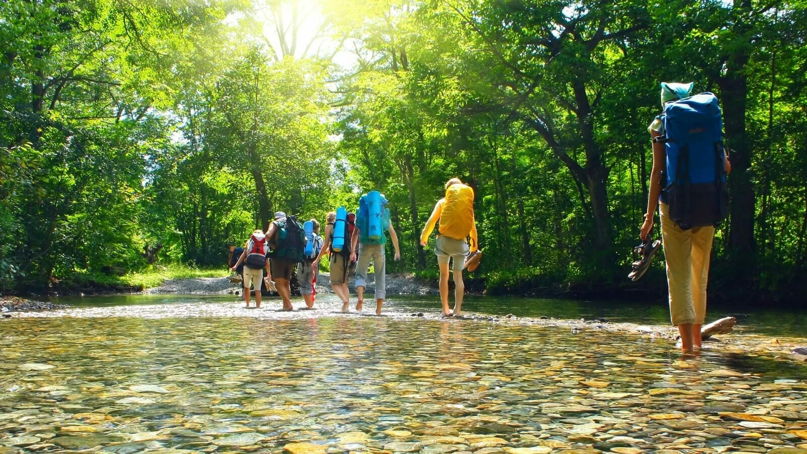 Group of hikers traversing a shallow, rocky river in summer sunshine